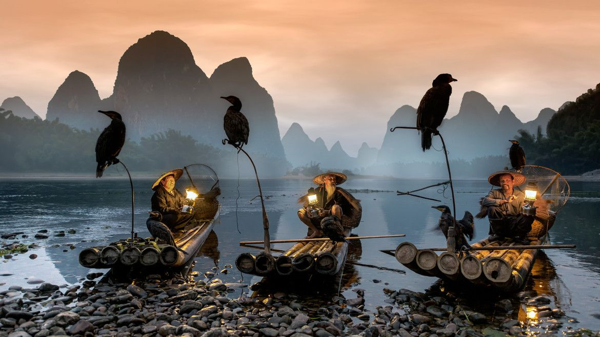 China, Li River, Xing Ping, Cormorant fishing
