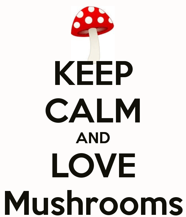 love mushrooms
