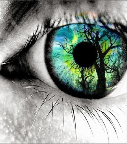 Dare To Dream Beautiful Eyes Pics Eye Art Eye Pictures