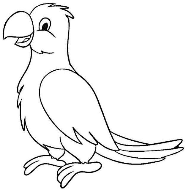 Mewarnai Gambar Hewan Burung Kakak Tua Aneka Mewarnai Gambar