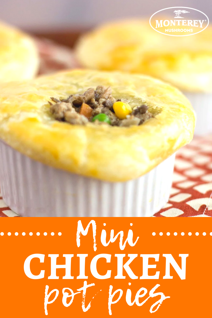 Blended Mushroom And Chicken Individual Pot Pies | Mini ...