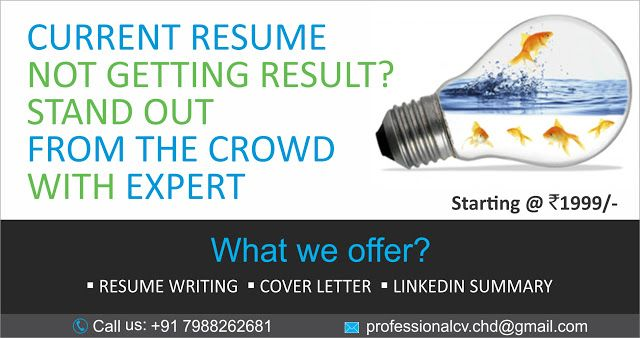 Professional Resume writing What we offer Advertisement - writing a professional resume