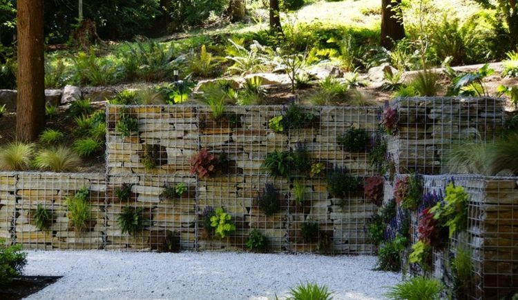 gabionen als deko im garten eine mauer mit pflanzen. Black Bedroom Furniture Sets. Home Design Ideas