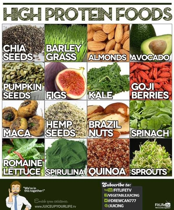 HIGH PROTEIN----All GREAT PROTIEN.