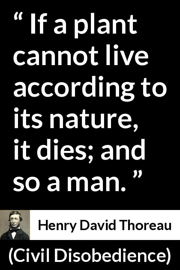 henry david thoreau civil disobedience if a plant cannot live  henry david thoreau civil disobedience if a plant cannot live according to its nature