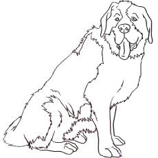 top 25 free printable dog coloring pages online  st