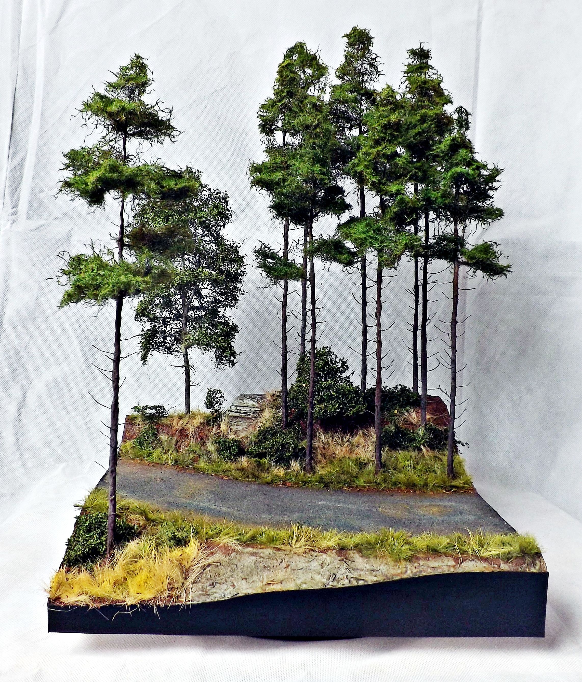 Mountain Road 1 35 Scale Diorama Base By Terence Young Beautiful Landscapes Model Terrain Nature Projects