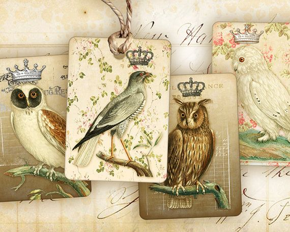 Vintage Flora and Fauna Digital Collage Sheet in 2.6 Inch Circles Birds Flowers Bee for Jewelry Pocket Mirrors Crafts and More piddix 725