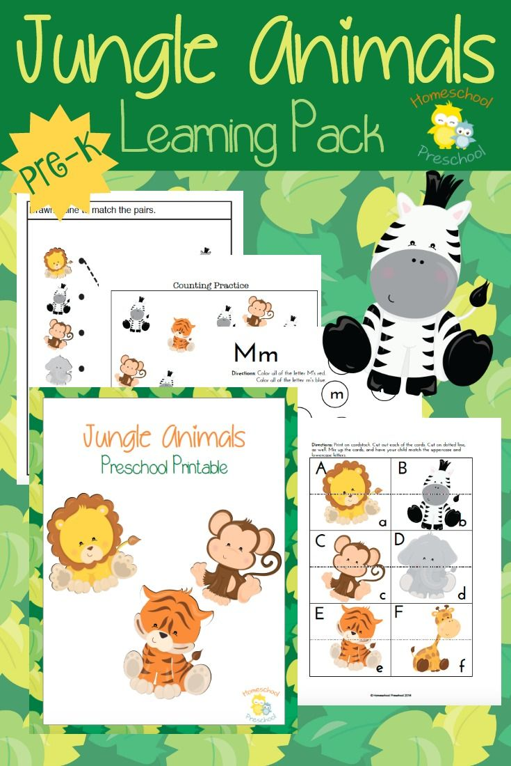 Jungle Animals Preschool Learning Pack | Animal, Jungle theme and ...