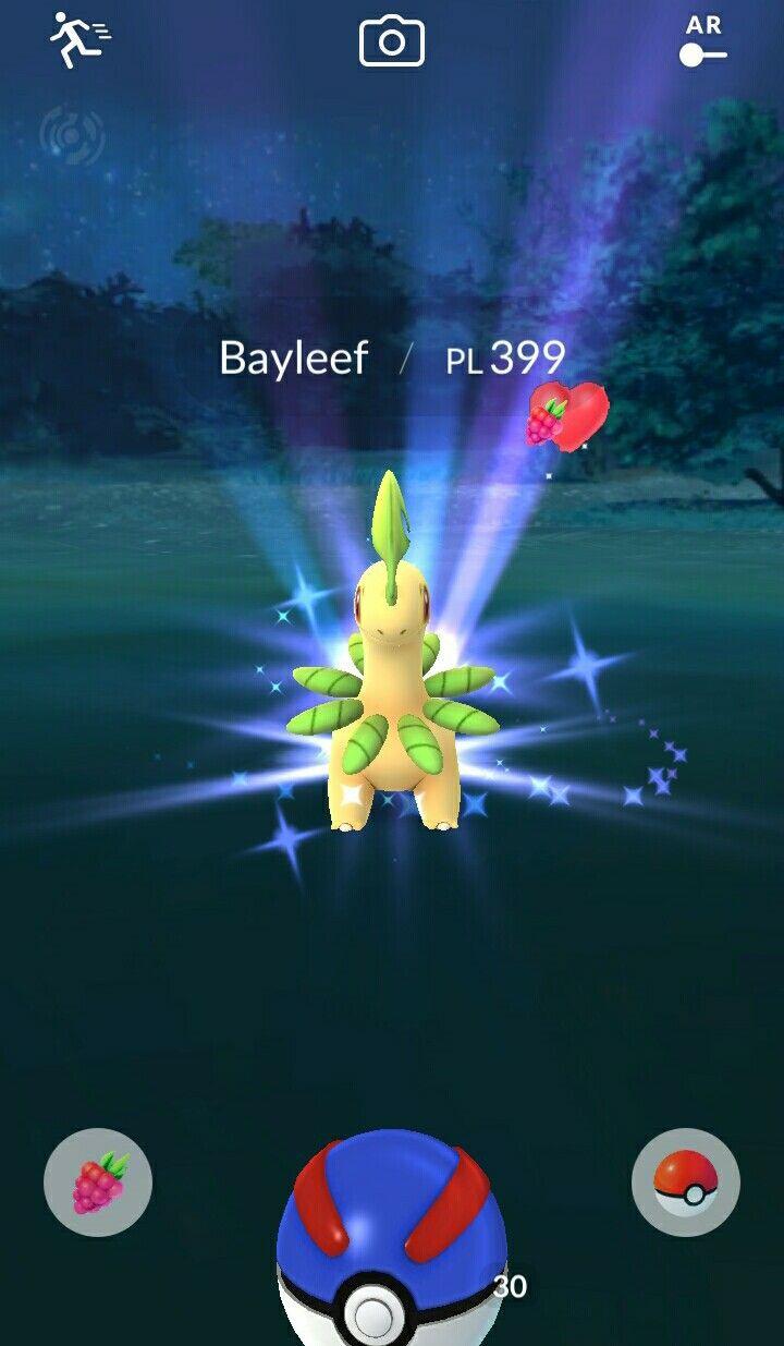 Bayleef In The Garden Pokemon Poster Movie Posters