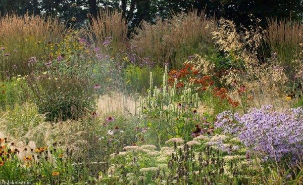 Colors of Fall in a Dutch Garden | 1001 Gardens