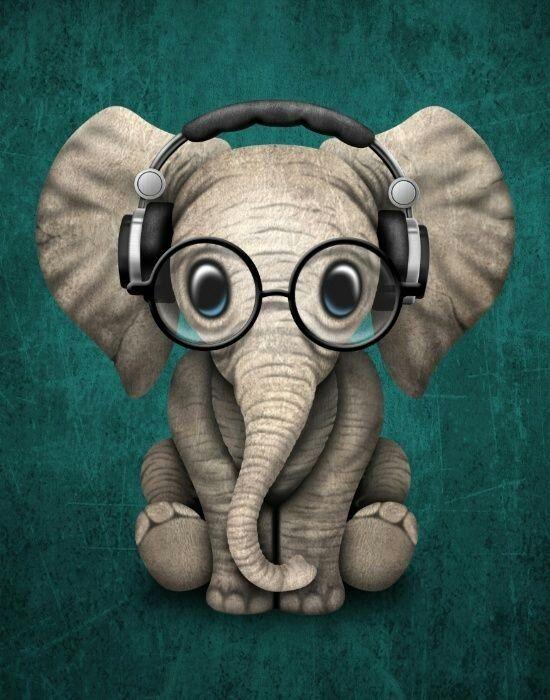 Fond Ecran Elephant En 2019 Dessin Elephant Dessins