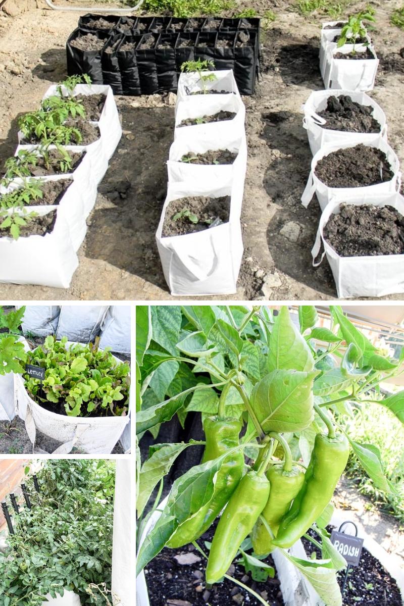 Garden Inspiration Galore Garden bags, Diy garden