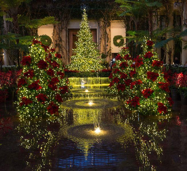 Longwood Gardens Christmas 2019.Longwood Gardens Christmas Michael Mcmahon Christmas At