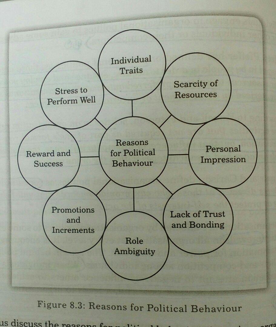 Reasons For Political Behavior Skills Development Management Skills Personal Success