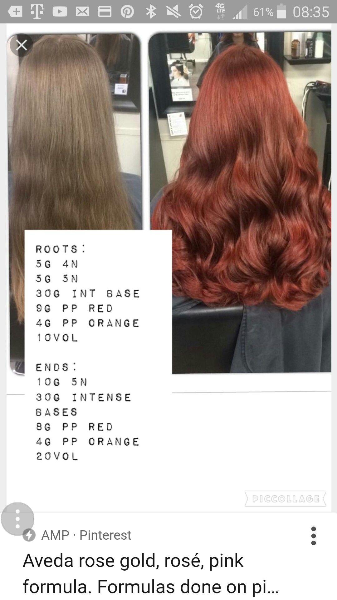 Brown Hair Color Wheel Topsimages