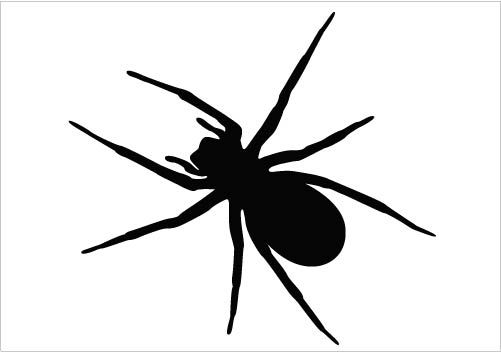 an ideal spider vector silhouette vector clipart in detail design rh pinterest com spyder victor reviews spyder victor