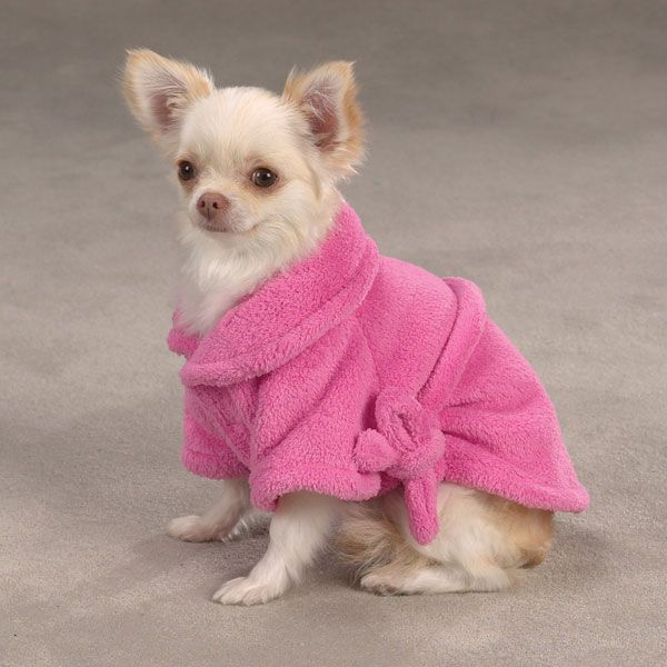 Cozy Dog Bath Robes Dog Boutique Chihuahua Dogs