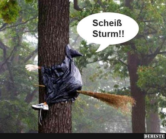 Lustige Sturm Bilder