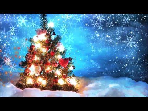 Happy chrishtmas christmas tree new video massages sms happy chrishtmas christmas tree new video massages sms wallpapers merry christmas wisheschristmas messageschristmas m4hsunfo