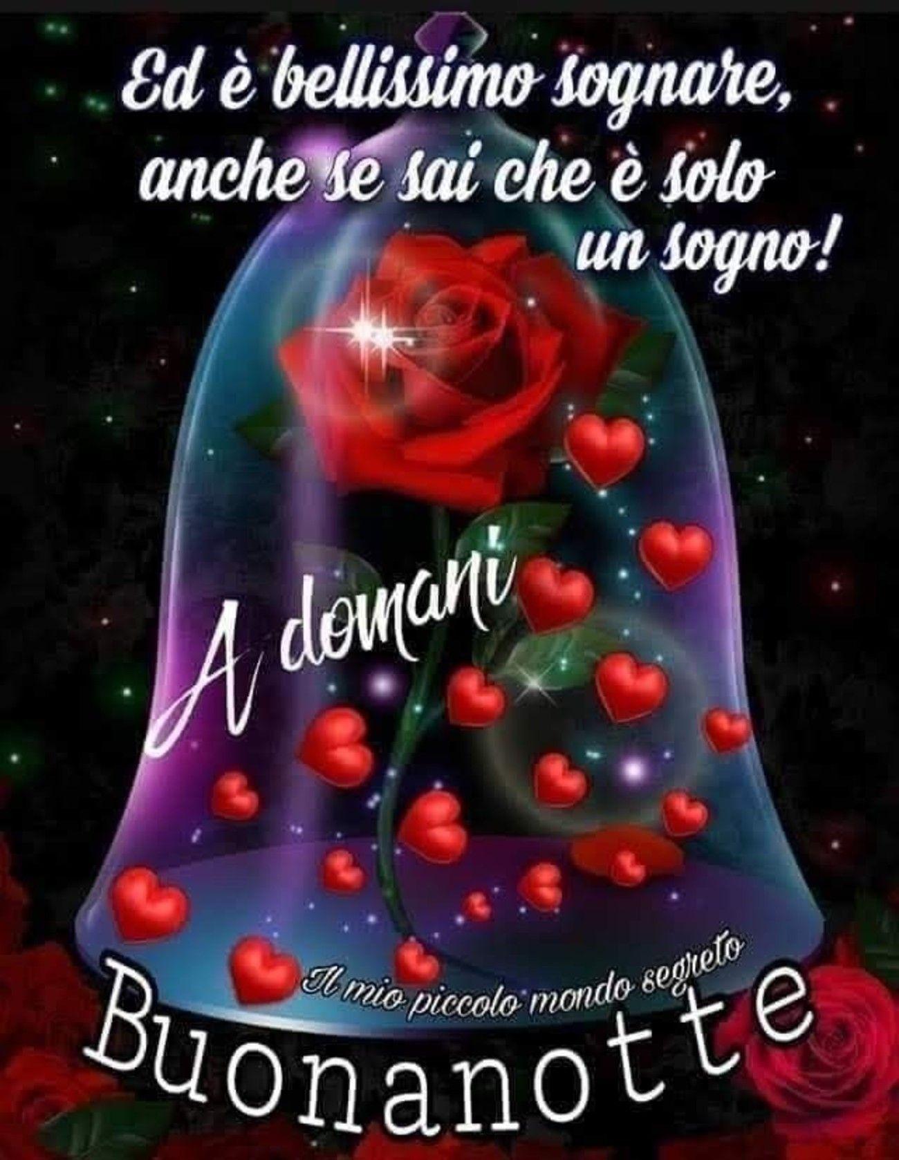 Frasi Auguri Di Natale In Spagnolo.Buonanotte 27 Buongiornoate It Buonanotte Auguri Di Buona Notte Buona Notte
