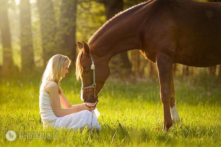, Pferd-Mensch-Fotografie #Araber | BZ Fotografie  #Pferdefotografie #Pferde, My Winter Blog 2020, My Winter Blog 2020