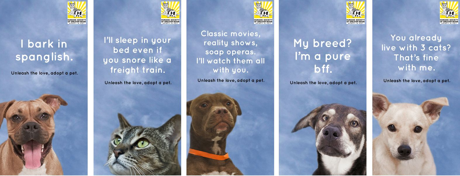 Alex Beker Humane Society Of Greater Miami Pet Adoption Campaign