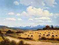alberta landscape - Google Search
