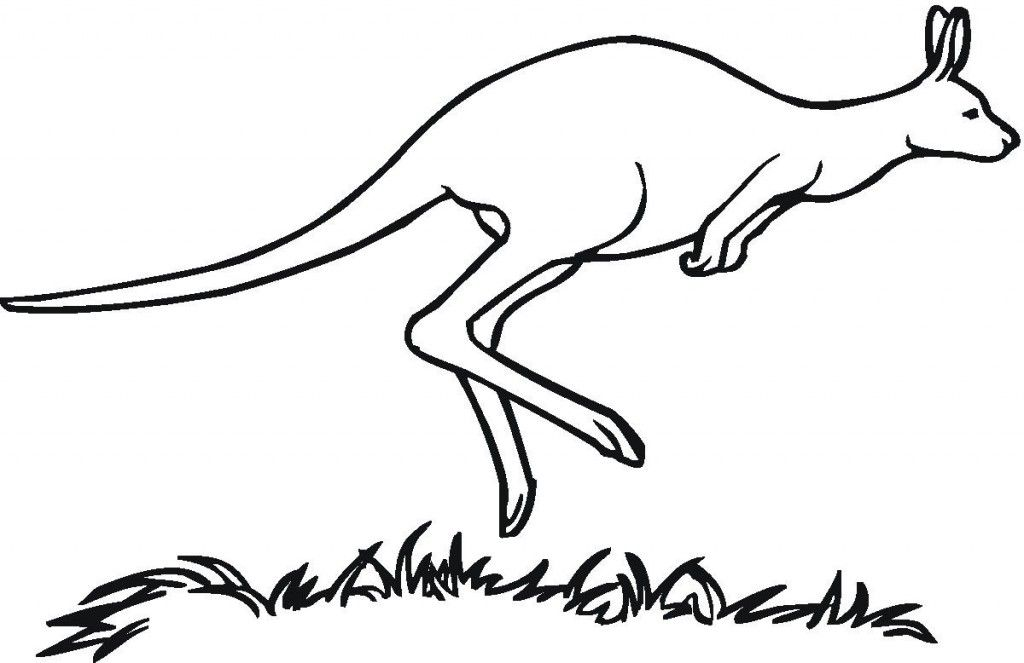 Free Printable Kangaroo Coloring Pages For Kids Animal Coloring