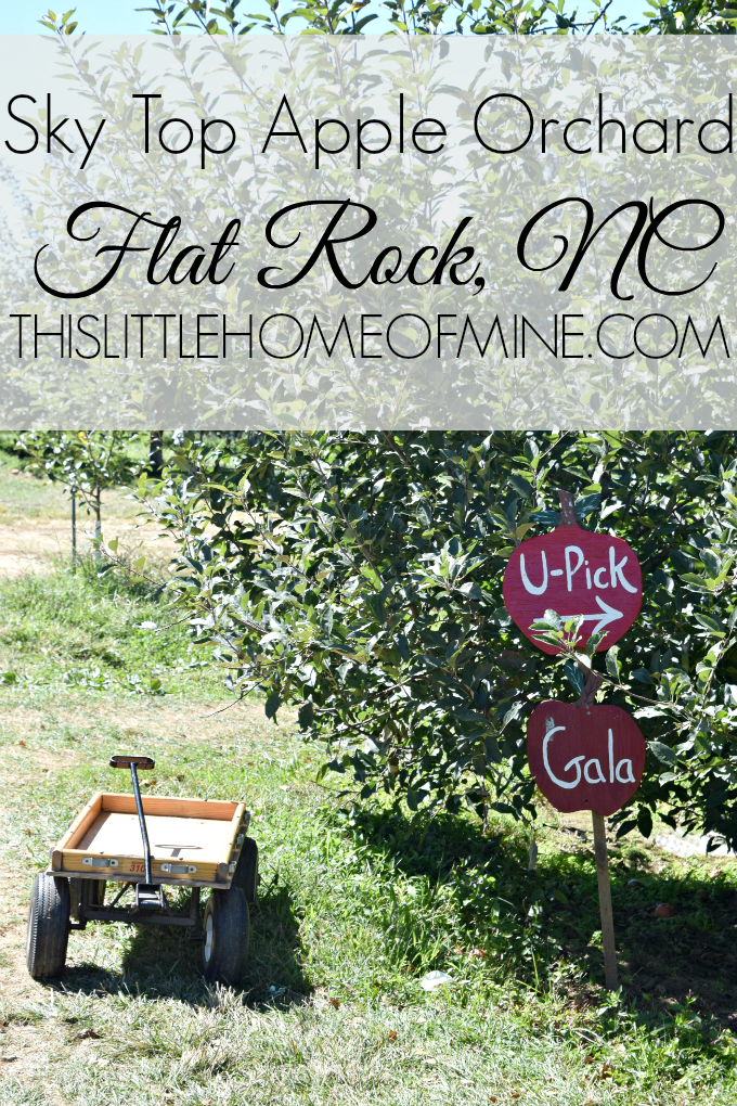 Sky Top Apple Orchard Flat Rock Nc This Little Home Of Mine Apple Orchard Creative Activities Apple