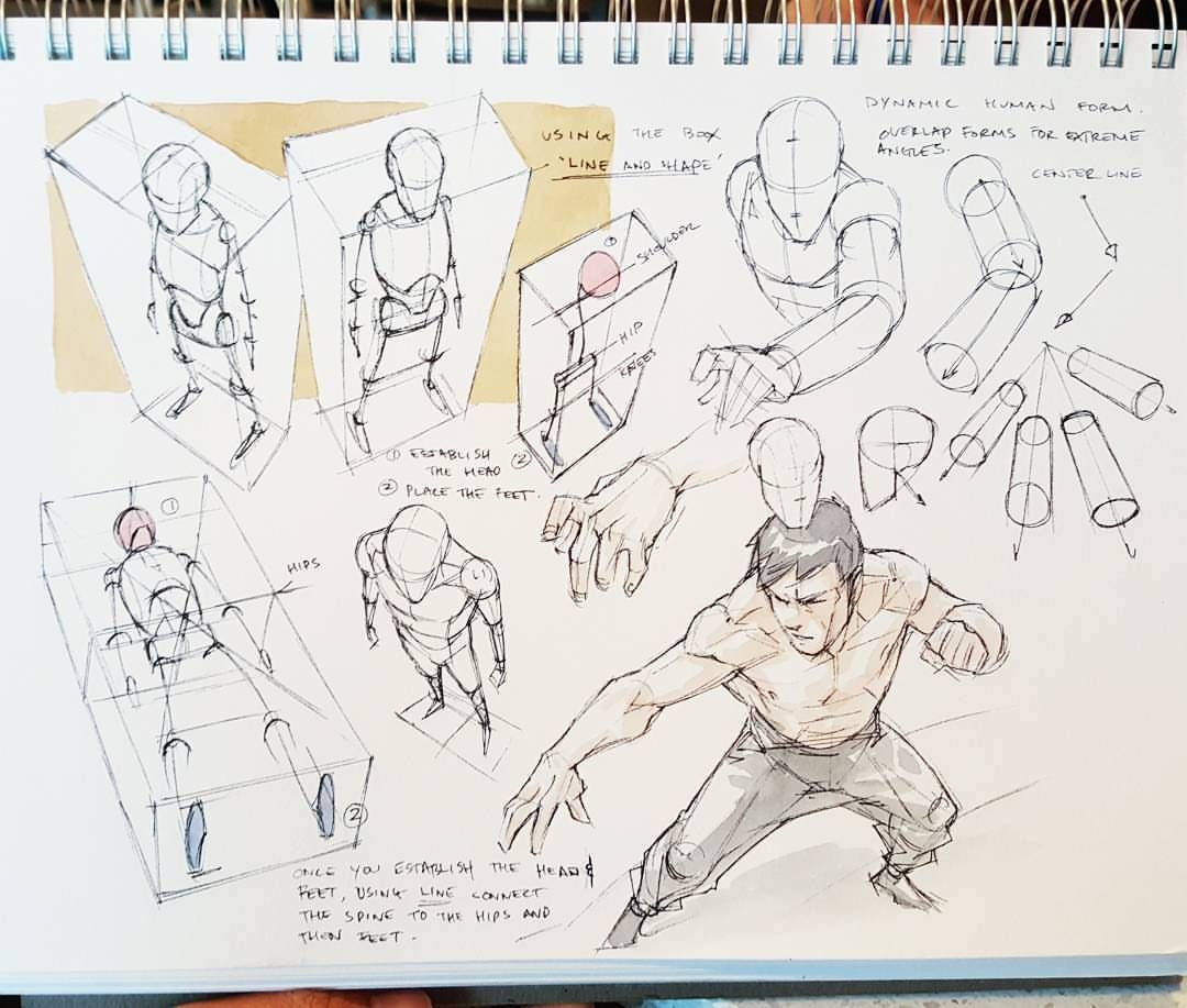 13415574 10154980995278636 4462610589673357106 O Jpg 1080 917 Perspective Drawing Lessons Figure Drawing Reference Figure Drawing