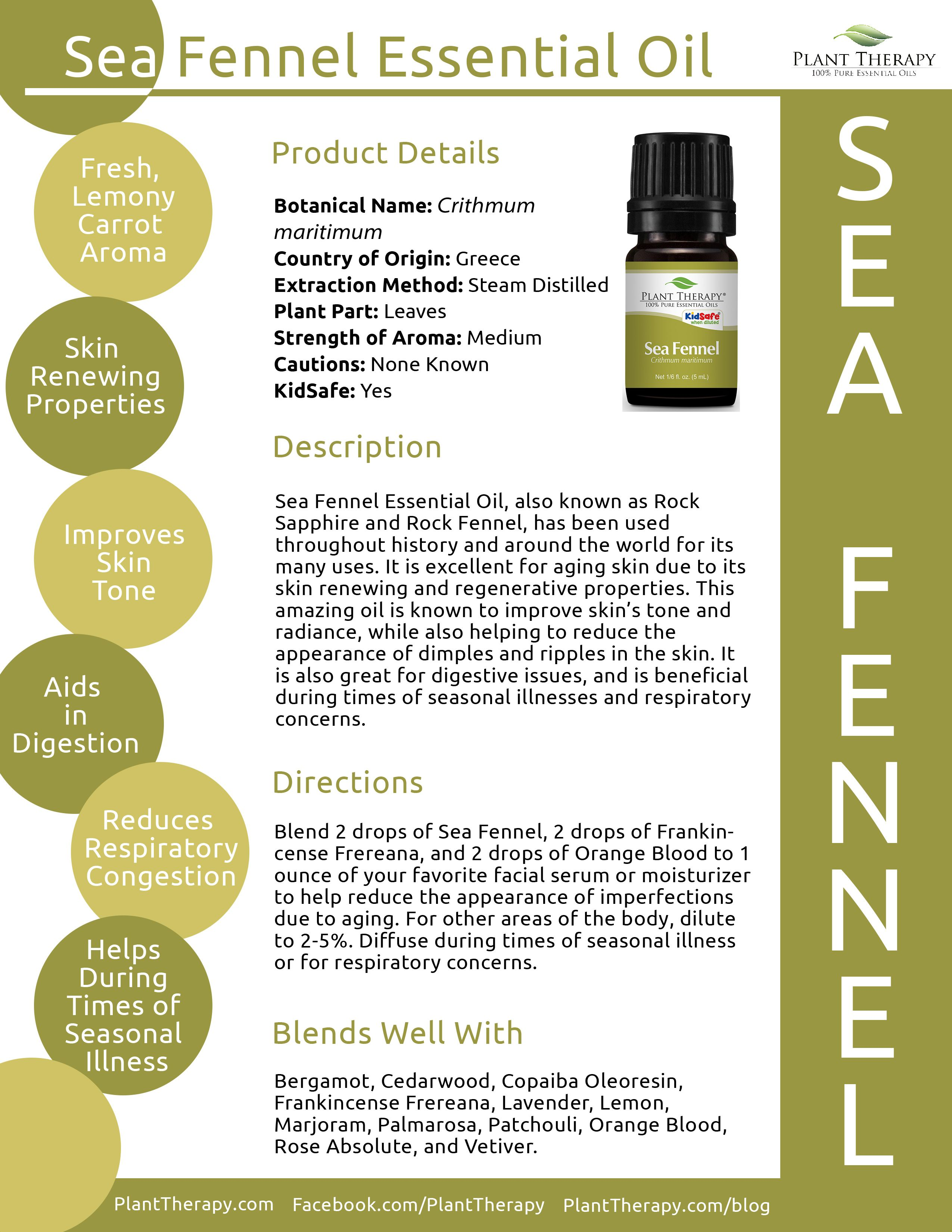 July Essential Oil of the Month: Sea Fennel | Oil education