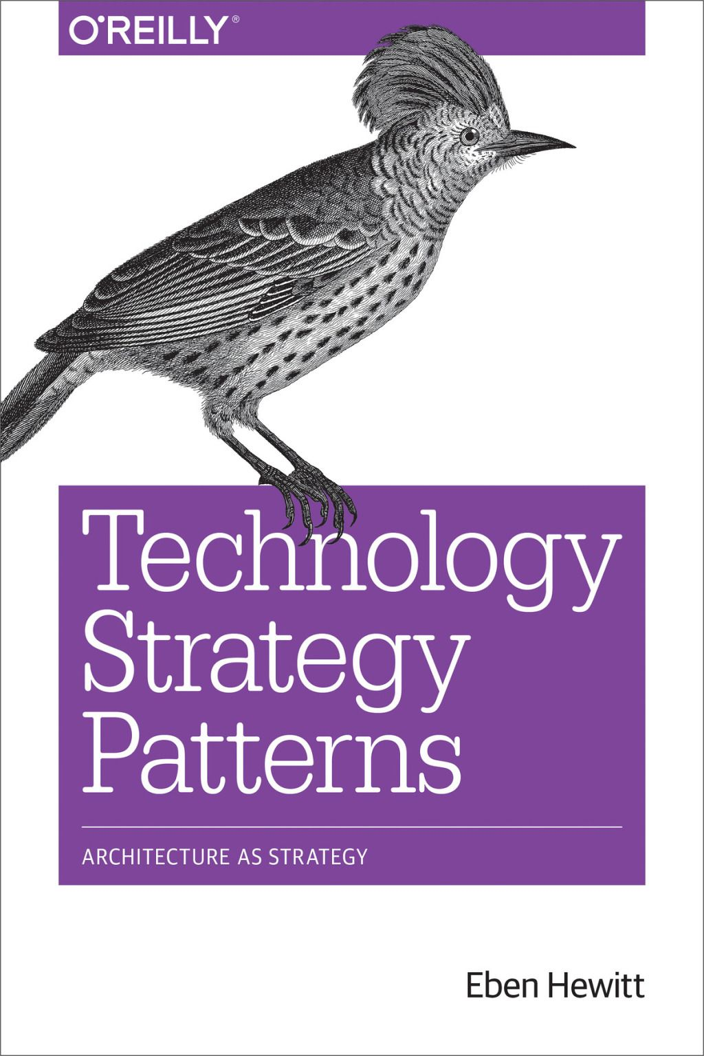 Technology Strategy Patterns Ebook With Images Reading