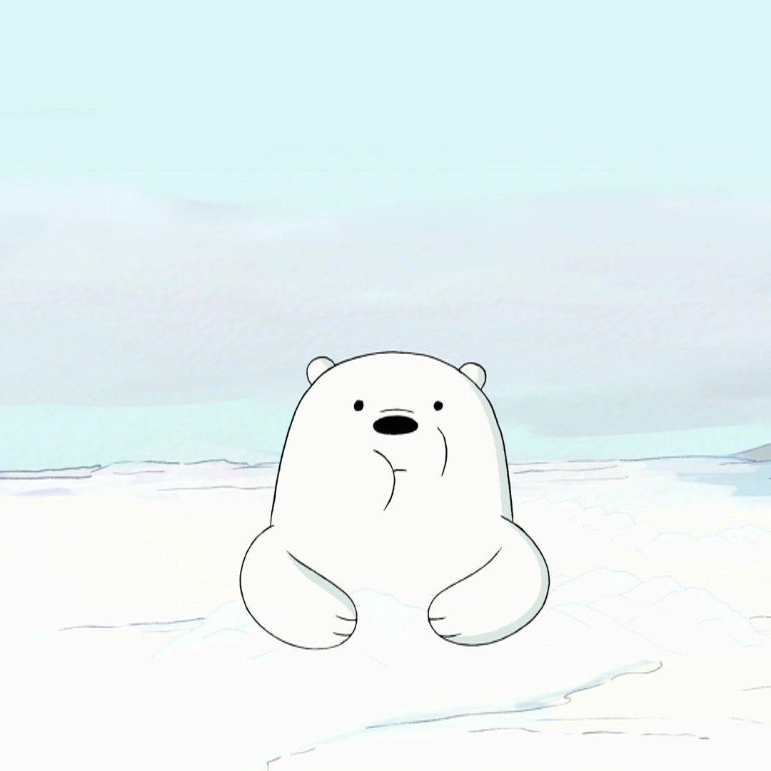 Baby Ice Bear (10) Gấu bắc cực, Dễ thương, Anime