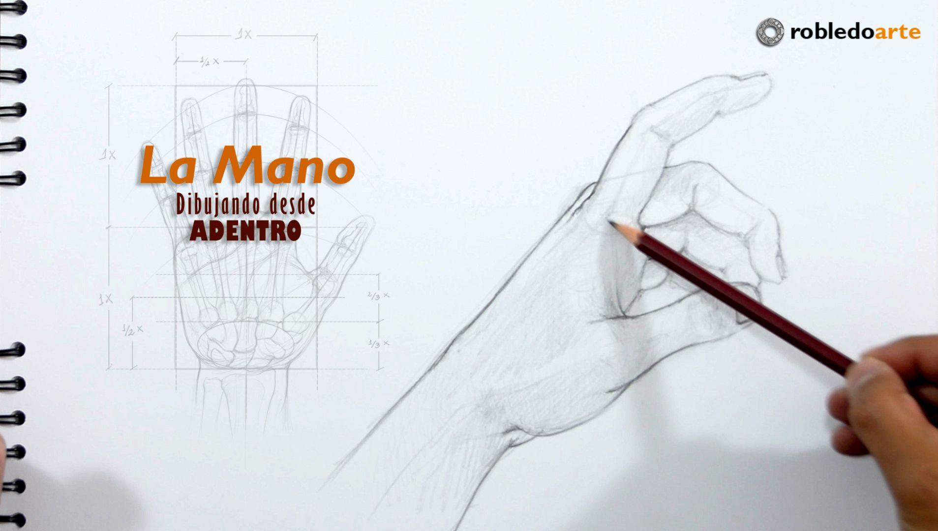La Mano – Dibujar desde adentro – Aprende anatomía para artistas ...