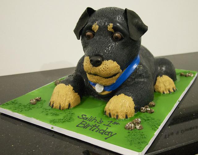 Birthday Cake Dog Design