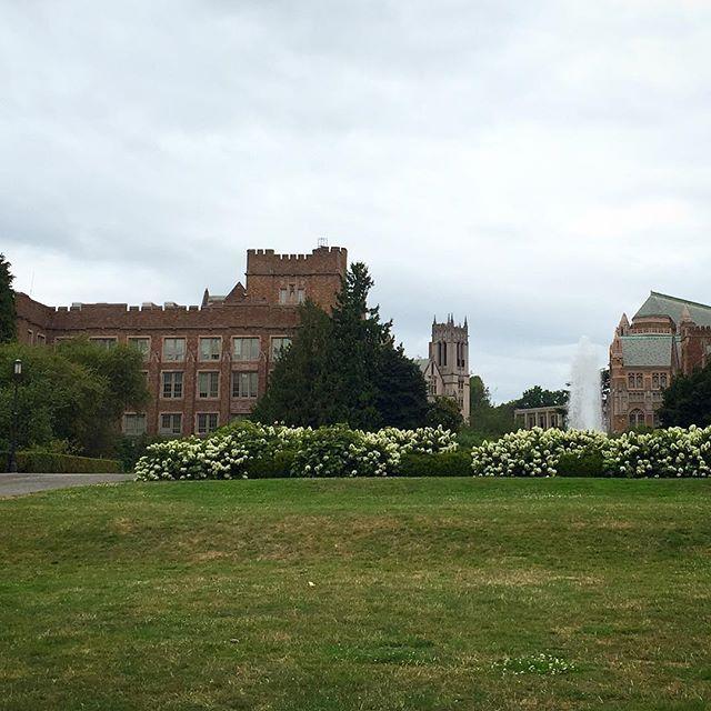 University of Washington, go Huskies! #Seattle #USA #visitusa #travel #traveling #instapic #citylife #landscape_lovers #landscape #picoftheday