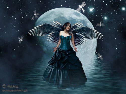Fairies Wallpaper Moon Fairy Fairy Wallpaper Gothic Fairy Fairy Pictures