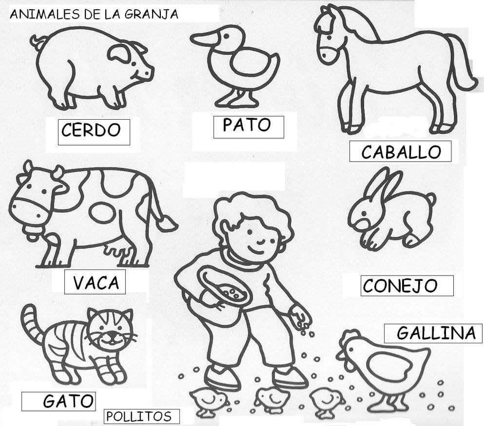 Pin De Andrea Sanchez En Educacion Animales De La Granja