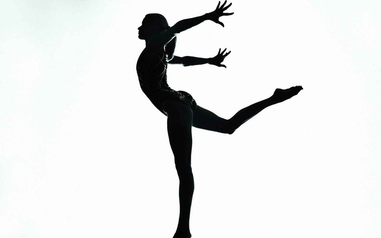 Took recreational gymnastics Gymnastic Silhouettes