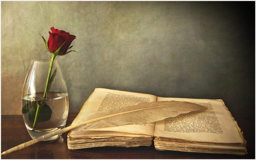Old Book And Rose HD Wallpaper