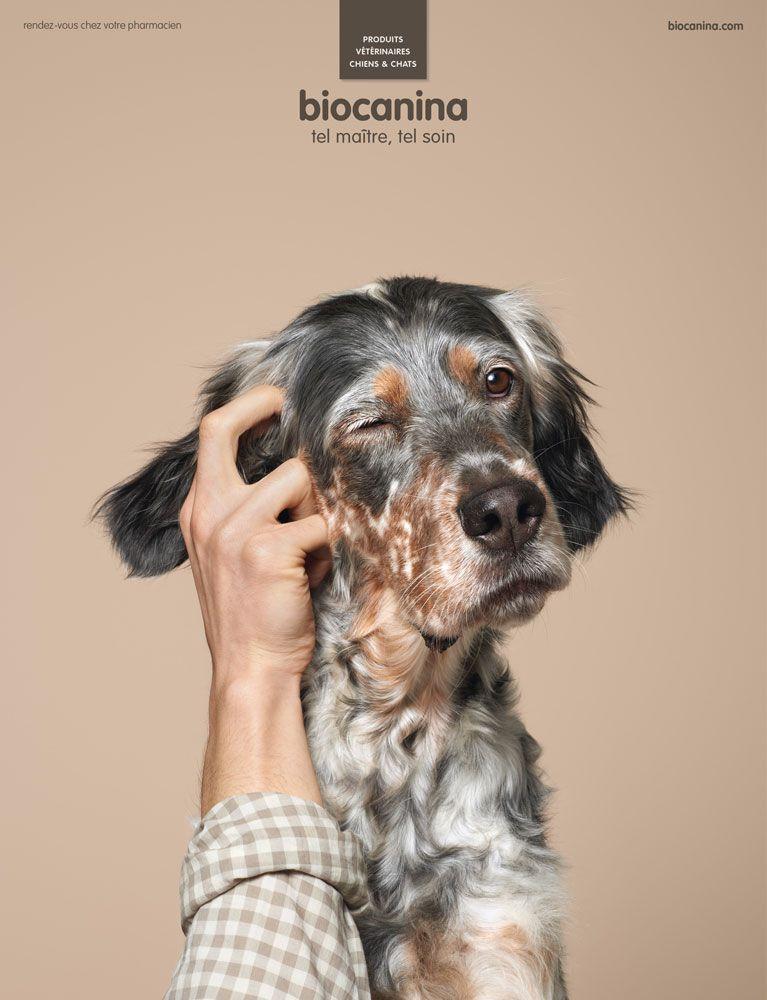 les 13 meilleures publicit s fran aises de la semaine veterinary pinterest v t rinaires. Black Bedroom Furniture Sets. Home Design Ideas