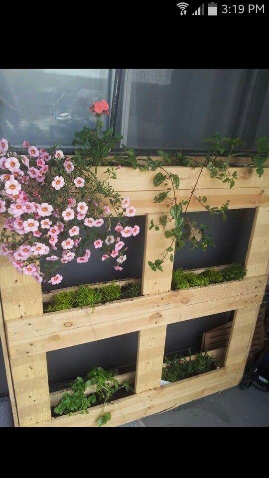 Jardinière de balcon fait à partir d'une palette de bois.