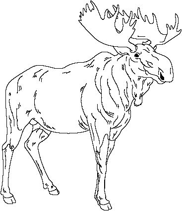 Moose Jpg 367 424 Pixels Coloring Books Coloring Pages Animal Silhouette