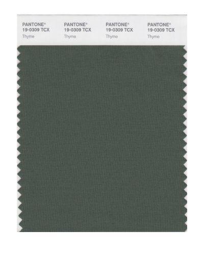 PANTONE SMART 19-0309X Color Swatch Card, Thyme Pantone http://www.amazon.com/dp/B004O79ISA/ref=cm_sw_r_pi_dp_x1Sbwb11CE5RR
