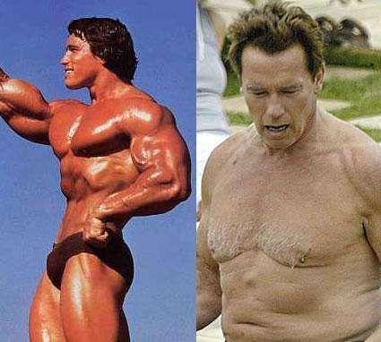 The Greatest Celebrity Man Boobs Arnold schwarzenegger and Celebrity - fresh arnold blueprint day 11