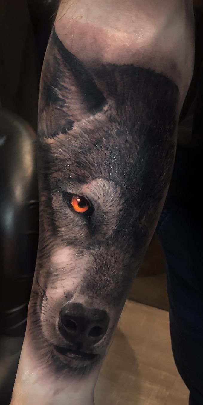 Photo of 50 of the most beautiful wolf tattoo designs the internet has ever seen – great …