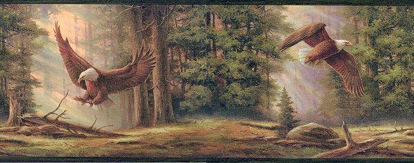 Pattern LL50081B Wallpaper border, Bald eagle, Wallpaper