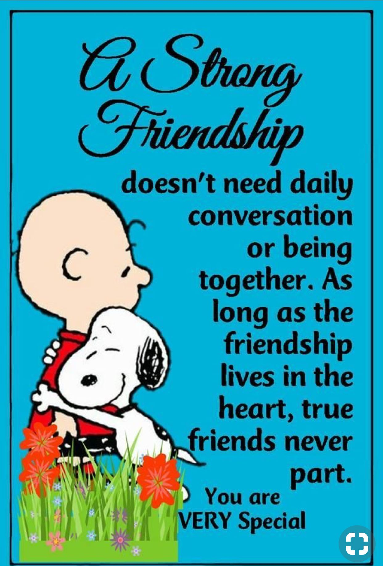 Pin By Stephanie Howard On Friendship Quotes With Images