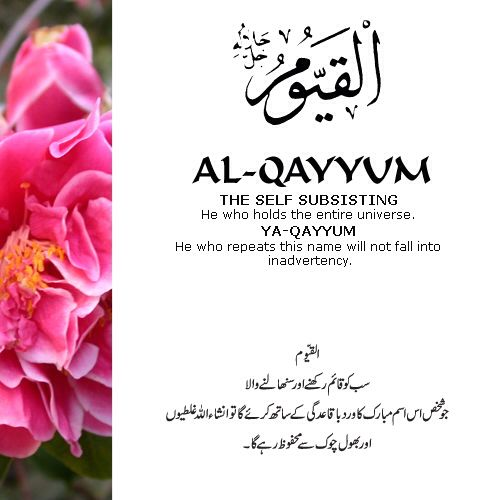 Ya qayyum 99 names of allah swt pinterest allah islam and islamic muslim quotes stopboris Image collections